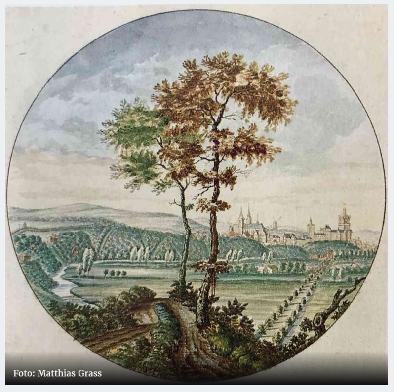 Heimatverein möchte Parkpflegewerk. Weniger Bäume im Alten Tiergarten.
