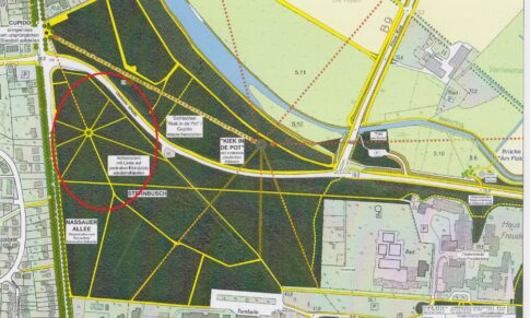 Vom Arbeitskreis Kermisdahl-Wetering: Achsenstern mit Rundplatz im Alten Tiergarten